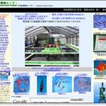 京浜錦鯉センター